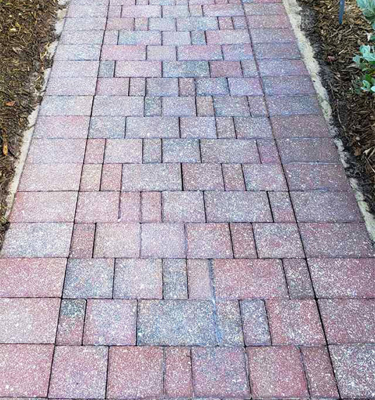 Pathway Pavers Cleaned and Sealed